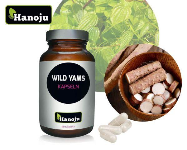 Wild Yams Wurzel Extrakt 500 mg 90 Kapseln